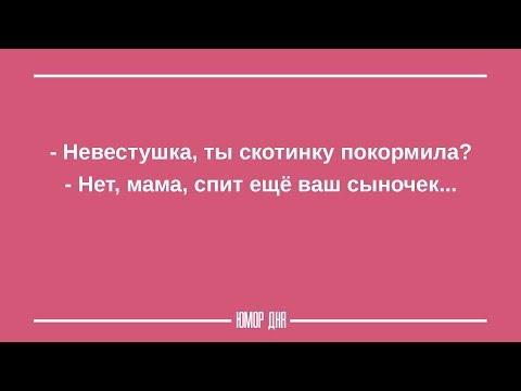 ЖЕНСКИЙ ЮМОР на каждый день ПОДБОРКА 12 - ЮМОР ДНЯ