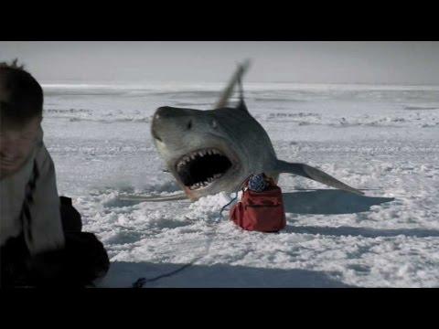 史上最恐の巨大人喰いサメ現る!/映画『ディープブルー・ライジング』DVD予告編