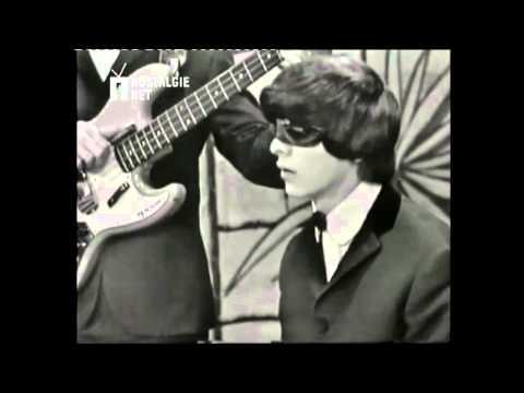 ZZ & De Maskers -  Ik heb genoeg van jou  1964