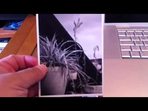 argus c3 revelado youtube. Black Bedroom Furniture Sets. Home Design Ideas