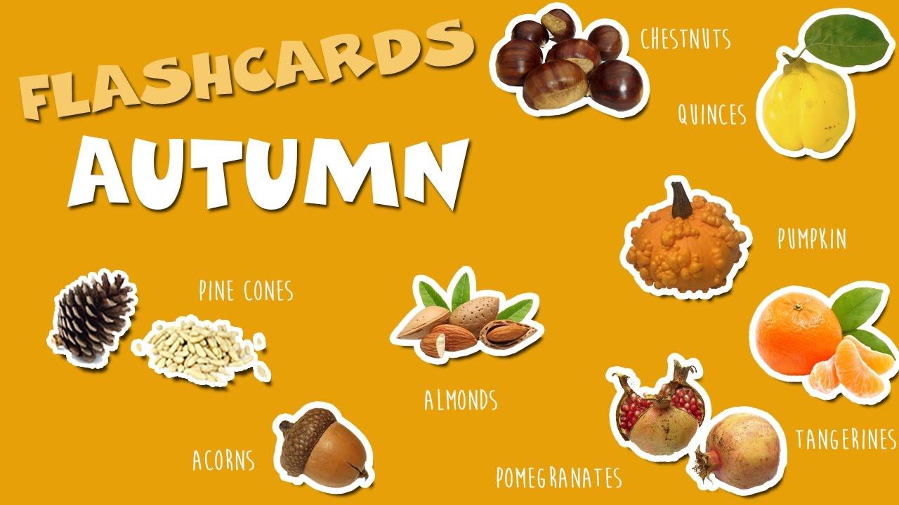 ingls para nios otoo autumn flashcards para nios imgenes reales