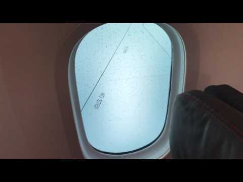 Boeing 787-9 Air France - Electronic Dimming