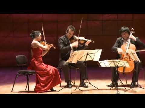 Schubert - Death and the Maiden - Hamer Quartet - 1st Movement (part 2/2)