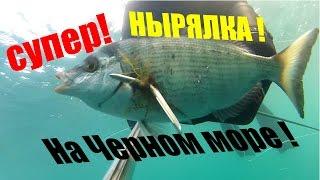 Подводная охота на Черном море!(Подводная охота в море требует от подводного охотника умения глубоко нырять и отменной реакции-знать прави..., 2016-02-07T17:56:44.000Z)