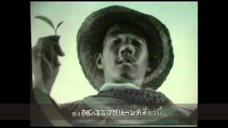 Actor [PeronYasu] Profile Video 2011 役者「ペロンヤス」プロファイル映像2011