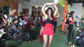 las musas del ecuador y su orquesta roja sonidos en vivo