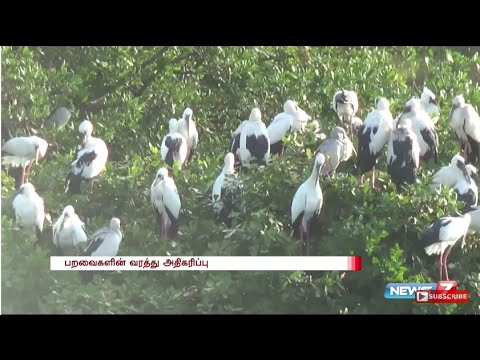 Vedanthangal bird sanctuary opened for visitors | News7 Tamil