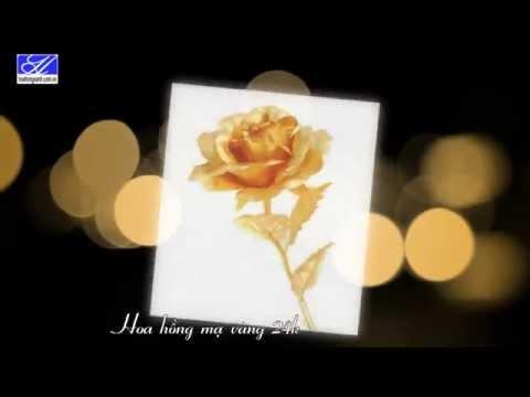 Hoa hồng mạ vàng 24K sang trọng và độc đáo