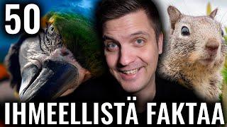 50 IHMEELLISTÄ FAKTAA MAAILMASTA #41