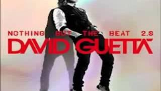 David Guetta   Play Hard  feat  Ne Yo   Akon    Clean