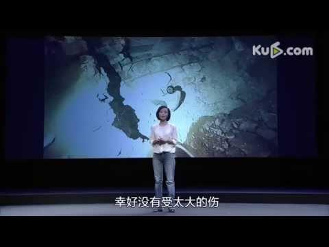 PM2.5調査「穹顶之下」 柴静(CHAIJING)雾霾调查 (完整版)