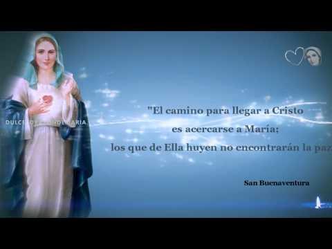 LA BELLEZA DE NUESTRA VIRGEN MARÍA (por los Santos)