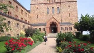 oberes Mittelrheintal  : Wanderung von Rüdesheim nach Oestrich Winkl