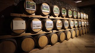 GLOBALink| Wine tourism booms in China's Ningxia