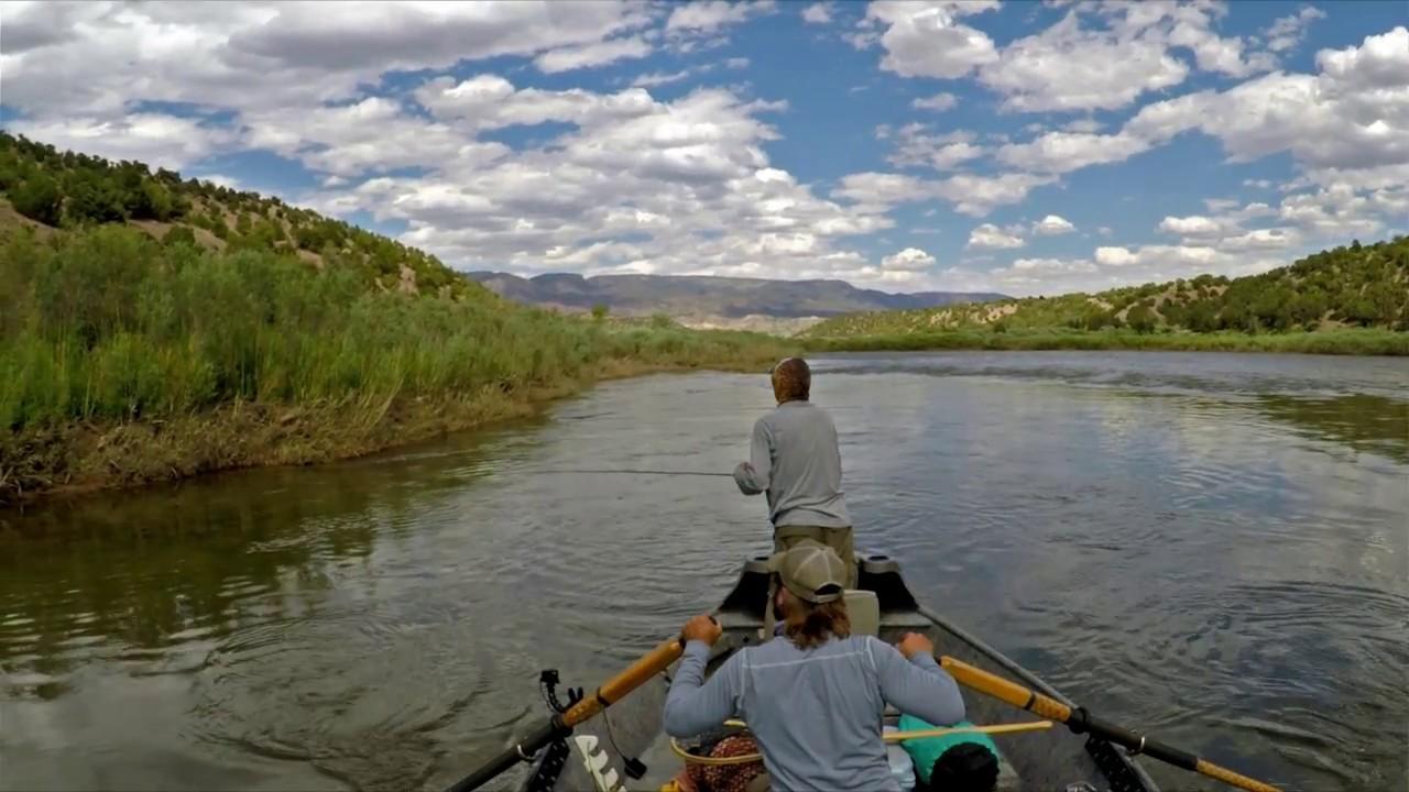 Fly fishing utah 39 s green river 2016 youtube for Green river utah fishing report