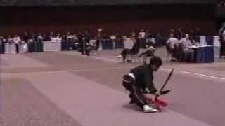 Repeat youtube video Shin Koyamada performs Shaolin Kung Fu at U.S. Nationals