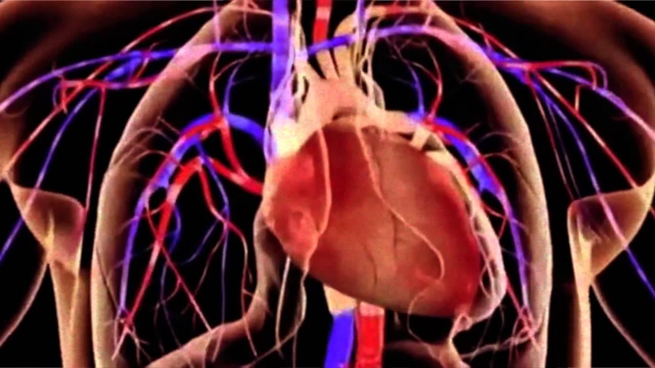 Hipertensión arterial pulmonar, innovación terapéutica..