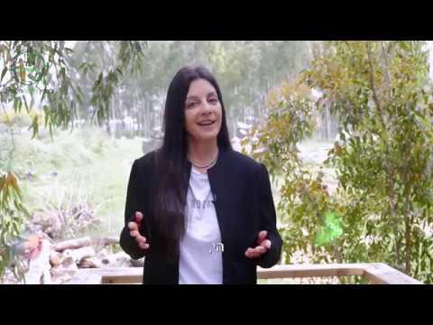 מדריך למנהיגות ניהולית קשובה - עקרון שלישי ייעוד ומשמעות