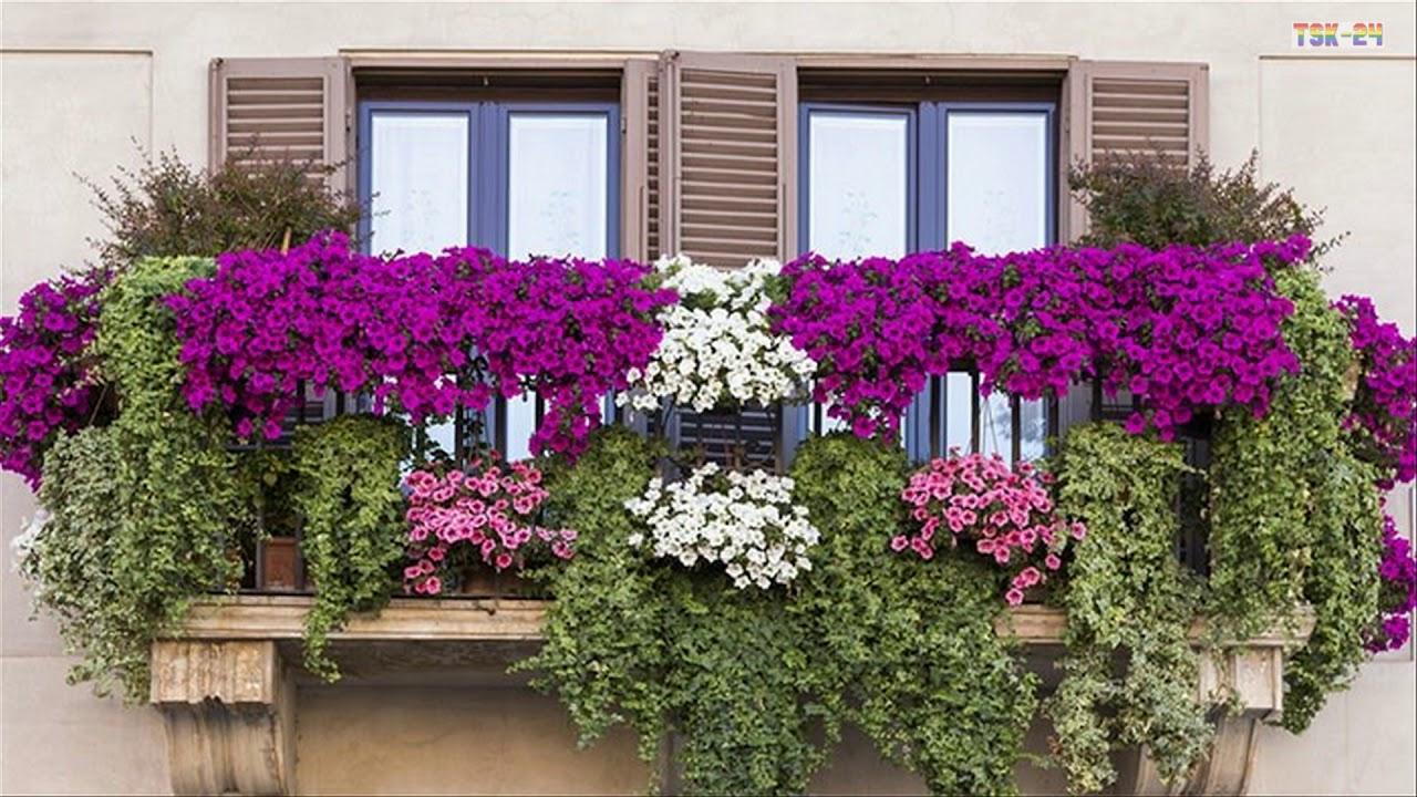 Best Small Balcony Garden Design Ideas Beautiful House Youtube
