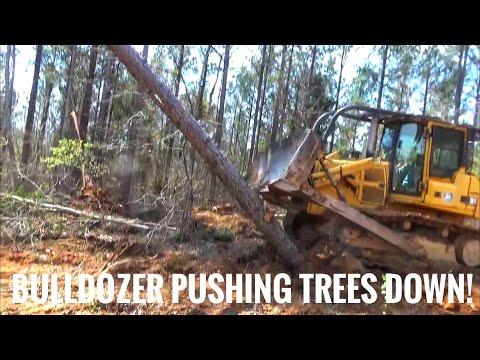 John Deere 850C Pushing Trees Down