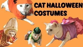 CATS FIRST HALLOWEEN COSTUMES!!
