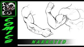 How to Draw Video - Arm Muscles - Various Poses - Narrated by Robert Marzullo