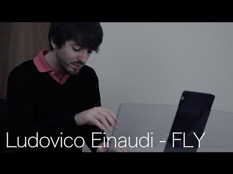 Ludovico Einaudi - FLY por David de Miguel