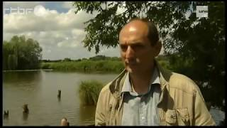 Saint-Omer en omgeving, een reportage