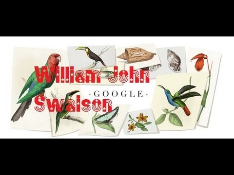 William John Swainson Google Doodle Logo