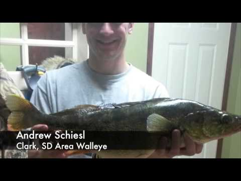 Dakota angler 2 minute fishing report 1 28 15 youtube for Dakota angler fishing reports