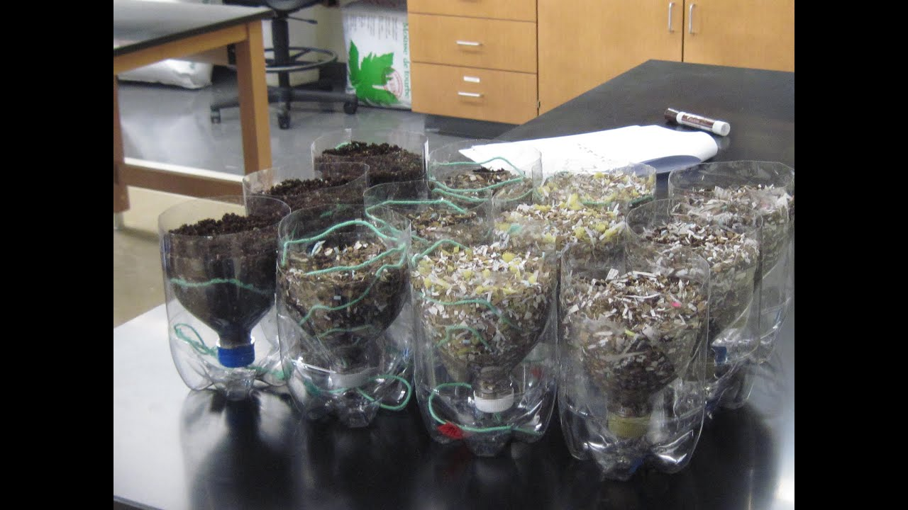 Growing plants in recycled materials youtube for Recycling of waste material