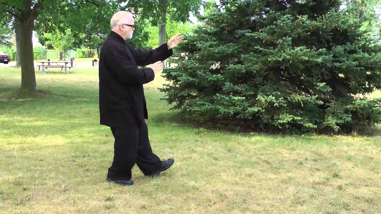 Yang Style Tai Chi 16 Movement short form, Steve Higgins, Cold ...