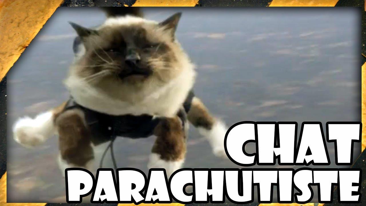 zap un chat fait du parachute zdw 54 youtube. Black Bedroom Furniture Sets. Home Design Ideas