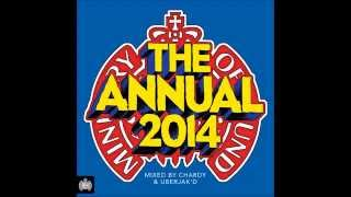 The Annual 2014 Minimix