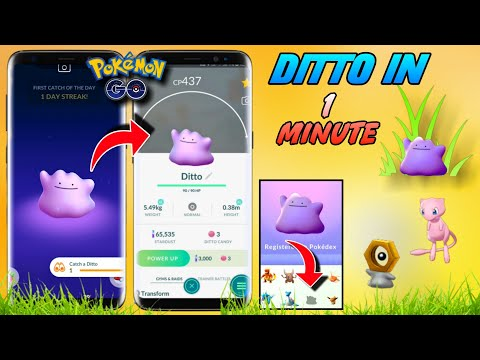 How To Catch Ditto In Pokemon Go | Find Ditto In 1 Minute | Catch Ditto For Melton & Mew Quest.