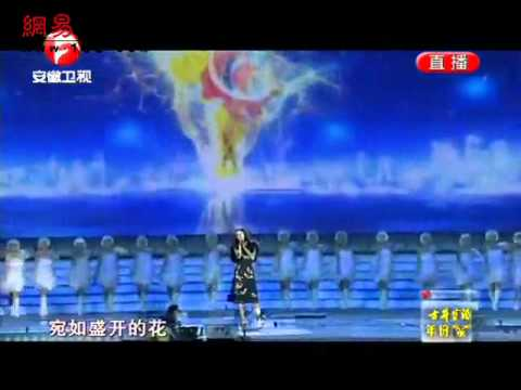 Vicki Zhao Wei singing 梦想成真 at Golden Rooster Flower Film Festival 2011