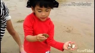 今年も潮干狩りの季節がやってきました。 ハマグリに子供たちはテンショ...
