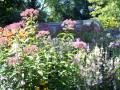 Garden by Jane, wonderful neighbor, great gardner.