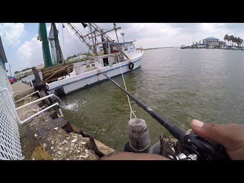 Fishing Port Lavaca Texas | Day 3