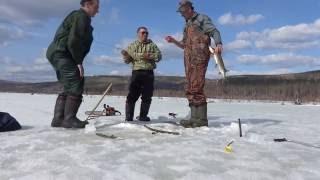 Рыбалка в Братске.