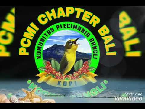 Pcmi Plat DK Bali Barong Sf