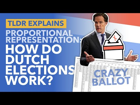 Proportional Representation: How the Dutch Electoral System Works (and the Pros & Cons) - TLDR News