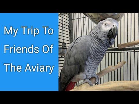 Friends Of The Aviary Bird Sanctuary