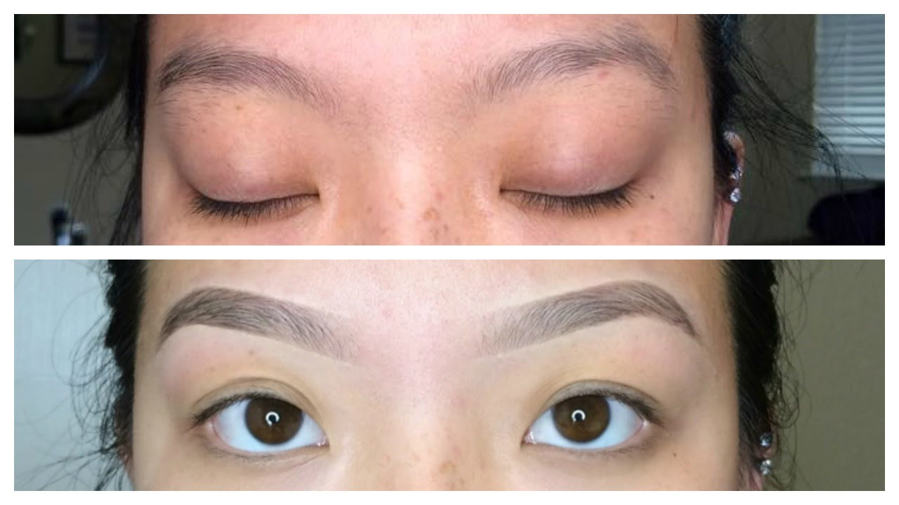 How I Groom My Eyebrows Waxing Plucking Trimming L