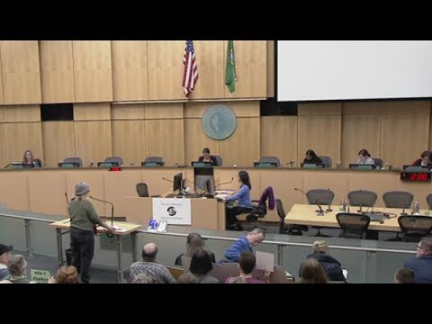 Select Committee On Citywide Mandatory Housing Affordability Public Hearing 2/21/19