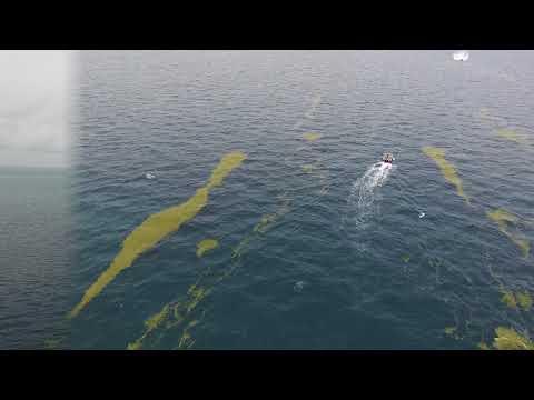 Miami OffShore Fishing in Pontoon
