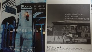 ホテル ビーナス A 2004 映画チラシ 2004年3月6日公開 【映画鑑賞&グッ...