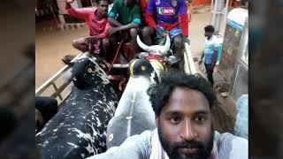 Cover images Madurai k.Purdur chall pandi