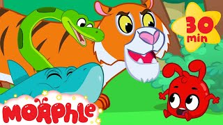 Download Morphle and the Scary Animal Bandits - Snake, Tiger, Shark, Lion and Dinosaur Videos for kids Mp3 and Videos
