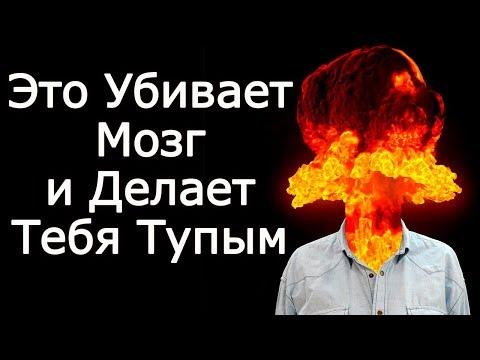 10 убийц мозга, делающих тебя тупым – Что убивает и разрушает мозг НЕ давая понять как стать умным